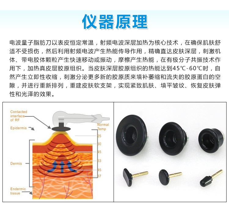 电波量子脂肪刀仪器原理_04.jpg