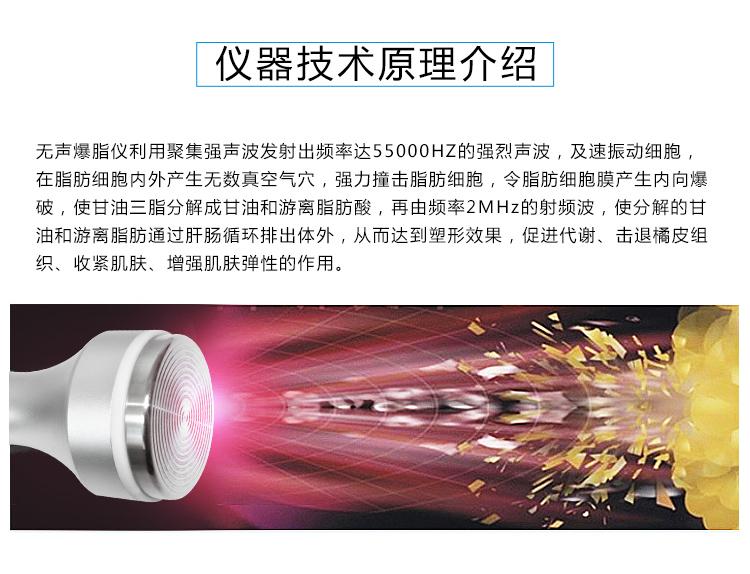 无声爆脂仪仪器技术原理_04.jpg