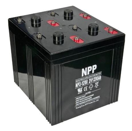 NP2-1200.JPG