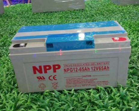 NPG12-65.JPG