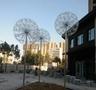 不銹鋼蒲公英發光雕塑--濟陽力高未來城
