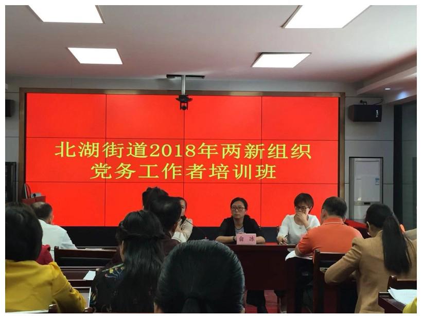 北湖街道2018年兩新組織黨務工作者培訓班.jpg