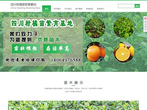 四川柑橘苗-眉山网站建设.png