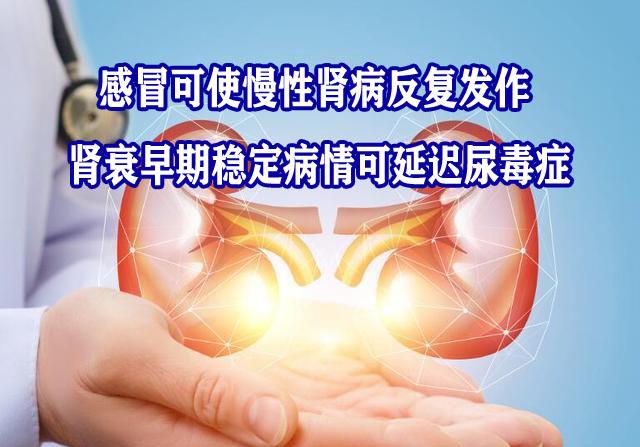 尿毒症2副本.jpg