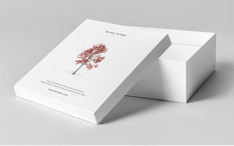 包装盒4.jpg