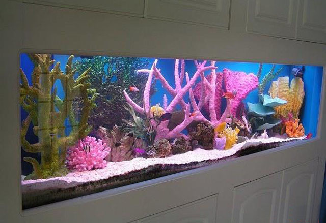 鱼缸用夹层玻璃.jpg