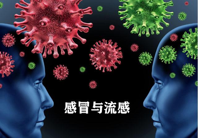 细菌或病毒感染副本.jpg