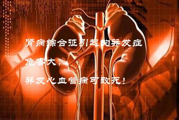 慢性肾炎3副本.jpg