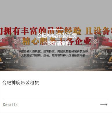 合肥神皖吊装租赁有限公司