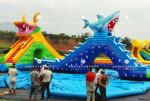 龙鲨戏水移动水上乐园