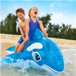 海豚充气浮具