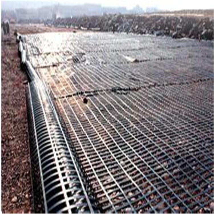 钢塑土工格栅7.jpg