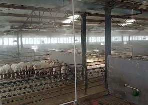 畜牧业消毒