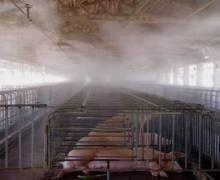 温州养猪场消毒除臭