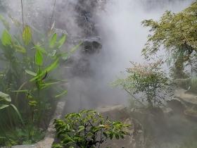 南京别墅庭院造雾景观