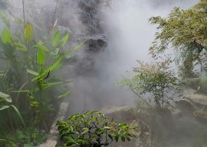 别墅庭院造雾景观