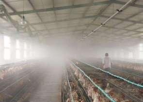 养殖业降温设备