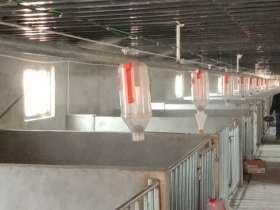 猪舍消毒除臭降温系统