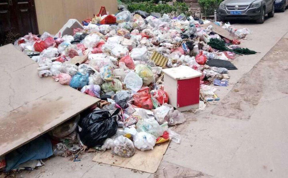 生活垃圾长期不清理的危害