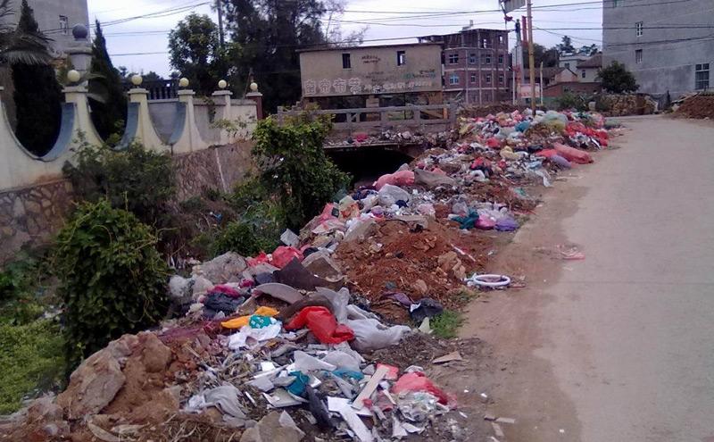 农村生活垃圾问题的形成机制与治理困境