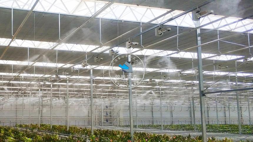 甘肃兰州新区农投花卉产业基地喷雾降温加湿项目 (6).jpg