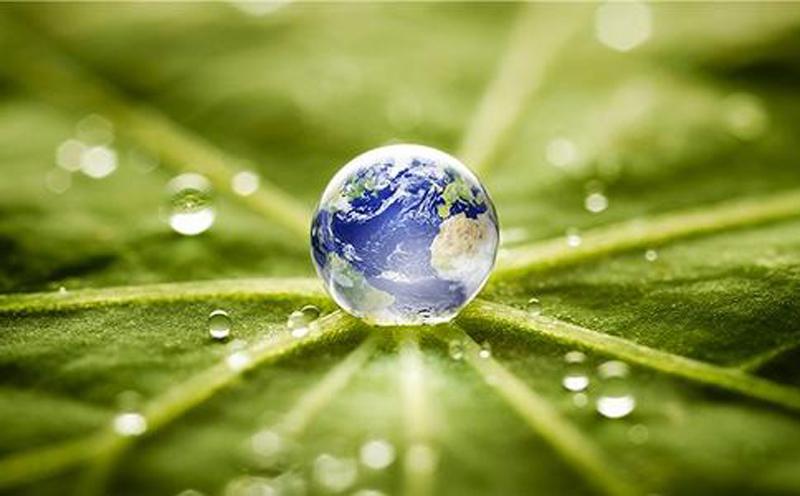 进博会全面贯彻绿色会展思路,倡导绿色进口也已成为新的风尚