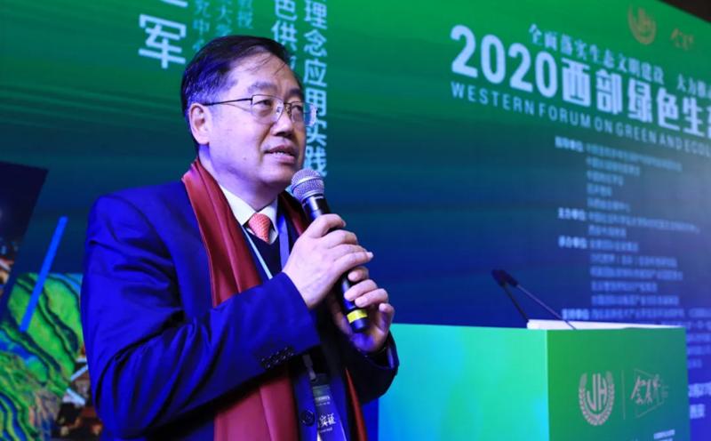 中国文化交流网-搜狐号:2020西部绿色生态发展论坛西安开幕