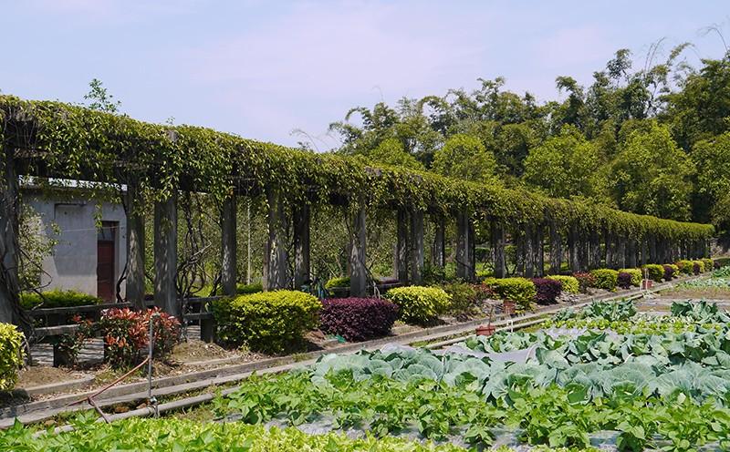 """""""绿色农业""""是国家战略,蕴含巨大商机!"""