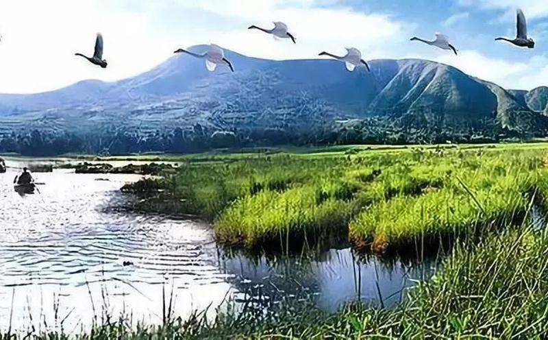 世界湿地保护日|生态文明建设与湿地生态环境保护 专题讲座