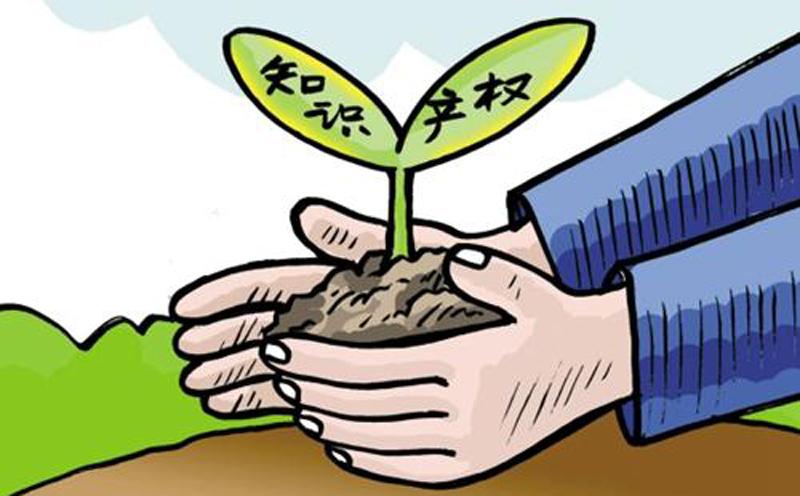 知识产权专题|农业企业知识产权被侵犯应当如何处理?