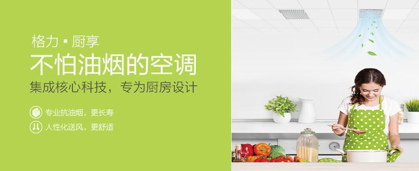 家用格力中央空调-厨享风管式室内机
