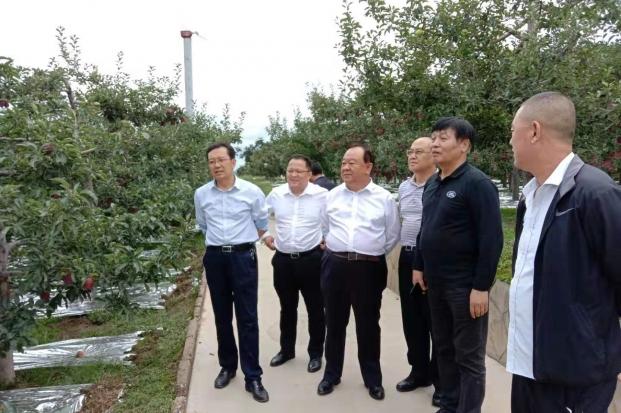 中国县镇经济交流促进会专家组赴天水市考察调研