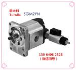 萨澳齿轮泵|SGM2YN|骏荣智能