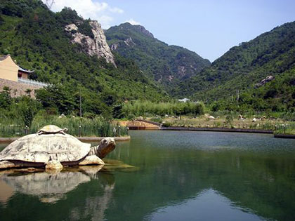 宁波酒埕岩