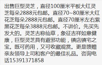 QQ截图20191025231701.png