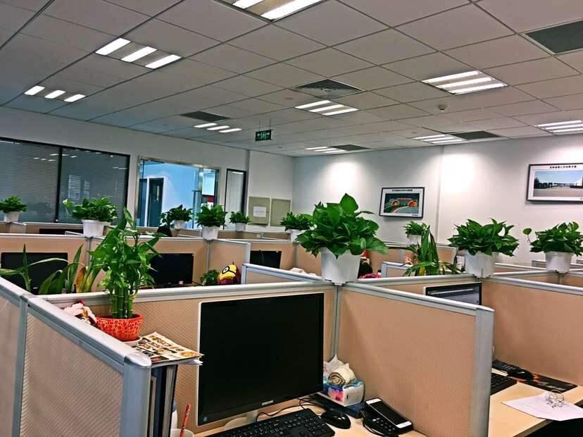 办公室图片.jpg