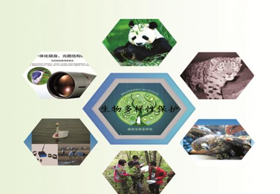 生态、生物多样性监测与保护体系建设简介