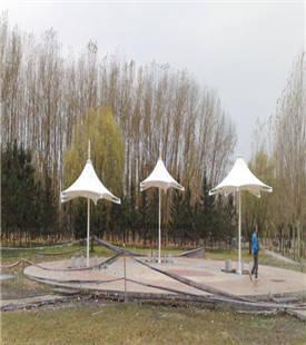 膜结构遮阳伞 (2).jpg