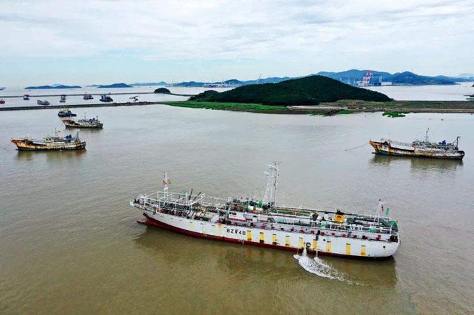 7月3日,浙江舟山市定海区西码头的舟山国家远洋渔业基地渔港.jpg