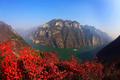霜叶红于二月花,重庆市巫山县官渡镇