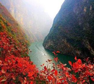 重庆巫山官渡红叶