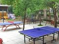乒乓球球场-