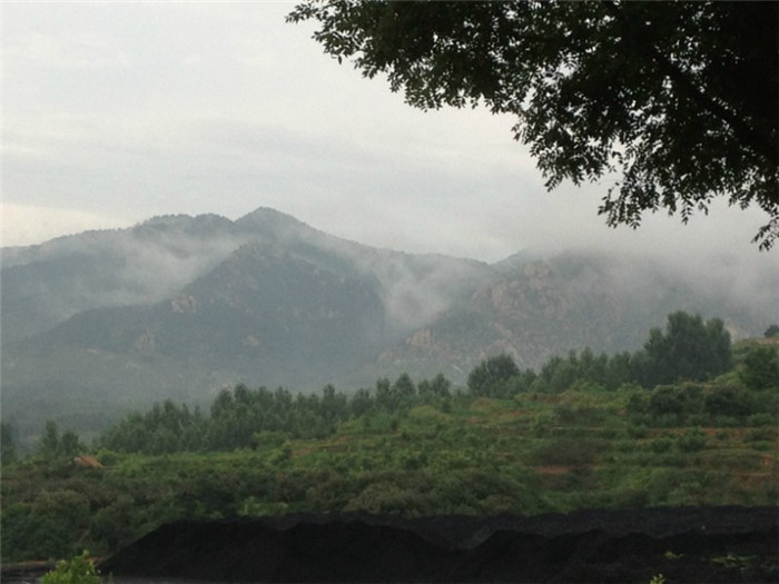 园林景观造雾的作用