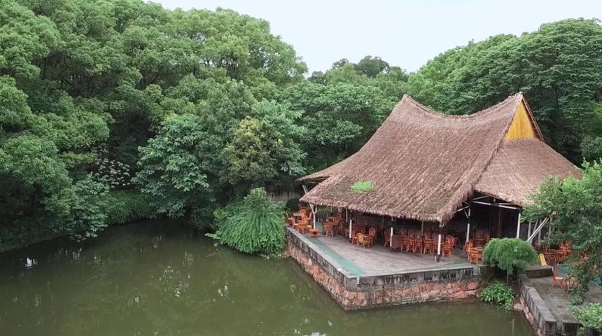 【竹景观】上海松江方塔园.何陋轩