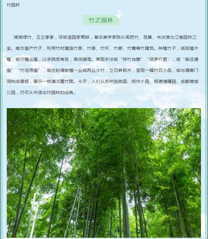 竹園林,竹亭