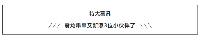 525e569bbb1c1df89c08515b01e2f6a.png