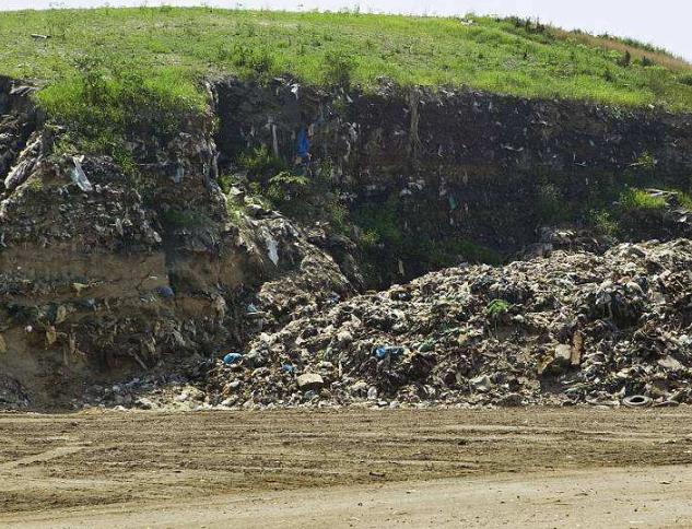 场地污染管理