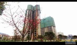 马家湾丰乐·未来城