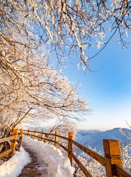 汉中龙头山雪景美如童话世界