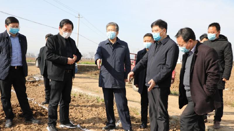 市委常委、常务副市长陈晓勇来勉检查指导疫情防控、农业生产、复工复产等工作